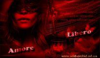 Салон Одессы : Amore Libero